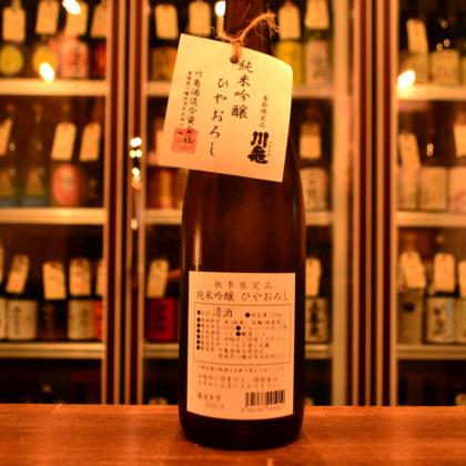 kawakame200903
