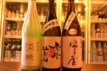 gunmaizumi170411